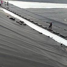 绿色防渗膜广安鱼塘的铺设方法1图片