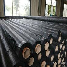 生产各种规格精品编织布集东森游戏主管袋吨兜吨袋图片
