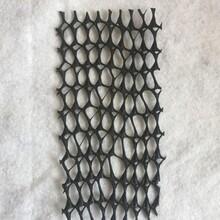 供應重慶市復合土工膜-三維排水網廠家,復合排水網圖片