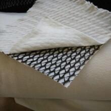 貴州三維復合排水網生產廠家4mm厚,土工網圖片