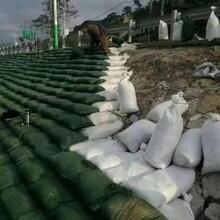 綠化生態袋護坡生態袋廠家批發安康圖片
