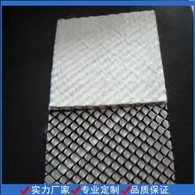 土工復合排水網規格土工三維網廠家,排水網圖片