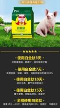 猪吃什么长得快养猪日长4斤添加剂配方猪饲料添加剂