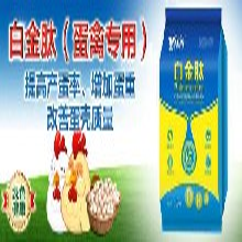 蛋鸭吃什么下蛋多蛋鸭増蛋的药物图片