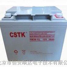 供应CSTK12V38AH蓄电池/美国山特