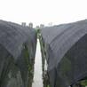 遮阳网宽度
