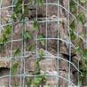 边坡绿化攀爬网价格