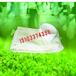 碧空环保除尘器布袋工业除尘器袋笼耐高温