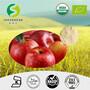 苹果粉有机苹果粉苹果提取物80目西安工厂现货供应图片