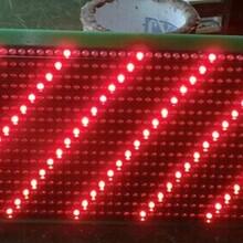 恒流1/8扫高亮P8单元板公交线路屏LED单元板销售图片