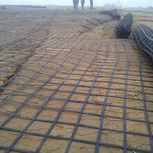 土工格栅多钱一平米、双向塑料土工格栅厂家