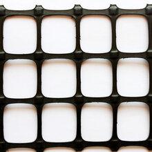 重庆玻纤土工格栅厂家电话、河北塑料格栅最新报价