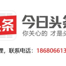今日头条华南总部精准广告投放免费曝光展示按效果付费