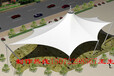 房县专业制作停车棚雨棚看台膜结构钢结构工程承接