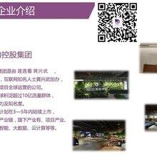 紫石榴应用商店制度_紫石榴是真的假的