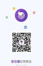 紫石榴应用商店宣传单_紫石榴盆景图像及价格