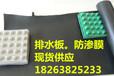 新闻联播:张家界养猪场防渗膜/益阳化工厂防渗膜-价格优惠