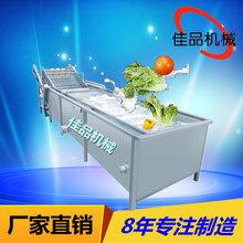 佳品供应多功能洗果机多功能洗菜机瓜果清洗机农作物清洗机图片