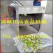 萵苣切片機水果切片機廠家直銷佳品食品機械