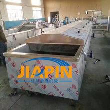 佳品机械供应多功能果蔬预煮机生产厂家定制加工图片