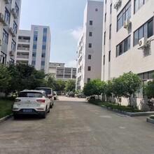 东莞万江独院厂房出租电话图片