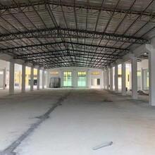 东莞寮步标准厂房可分租图片