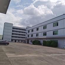 东莞洪梅独院标准厂房信誉保证图片