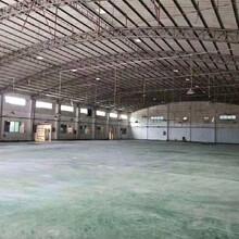 东莞石排独院标准厂房出租图片