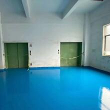 虎门雅瑶1楼厂房出租2300平方图片