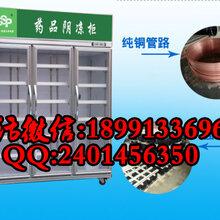西安药品冷藏柜价格