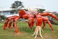 加工订制做玻璃钢螃蟹雕塑