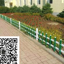 PVC塑钢护栏PVC草坪/道路/社区护栏厂家图片
