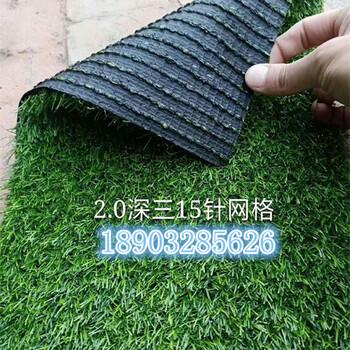 围挡墙用仿真人工草坪/假草坪地毯/人造草坪厂家价格