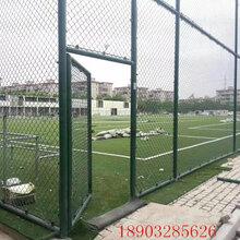 学校操场围网/操场护栏网/操场围栏多少钱一平方米?图片