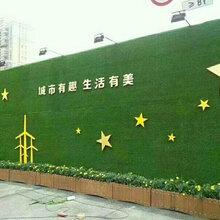 建築(zhu)施工圍擋(dang)用假草(cao)坪/仿(fang)真草(cao)皮牆(qiang)/綠草(cao)圍擋(dang)/塑料草(cao)坪廠家價(jia)格圖片