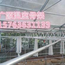 建设花卉温室大棚一亩地多少钱图片