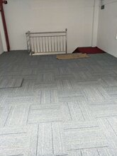 办公室地毯,家居地毯,酒店地毯,影院地毯等