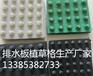 新闻联播¥鹤岗3公分排水板鹤岗2公分滤水板--有现货