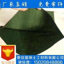 青海省果洛土工袋生态袋价格便宜使用年限长晟坤土工图片