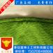 吉林省四平市生态袋尺寸支持定做检测合格土工袋找晟坤土工