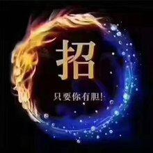 上海金融投资期货投资总部招商,面向山东日照招期货运营中心