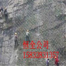 包山铁丝网合肥包山铁丝网包山铁丝网厂家直销图片