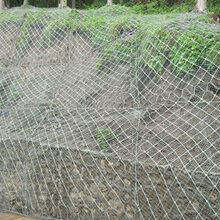 柔性防护网全国供应主动防护网施工