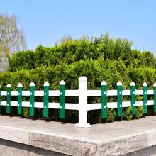 山东厂家生产草坪护栏图片
