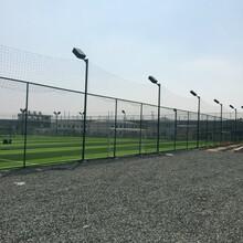 兰州足球场围网施工完毕图片