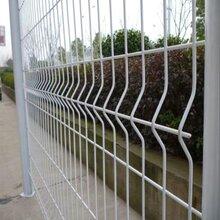 桃型柱护栏网生产厂家在安平旺丰图片