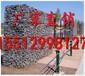 铅丝笼厂铅丝笼厂家大型铅丝笼生产厂家