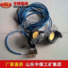 DLEC2本质安全型电子喇叭,DLEC2本质安全型电子喇叭工作原理图片