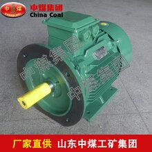 Y2电动机,Y2电动机使用条件图片