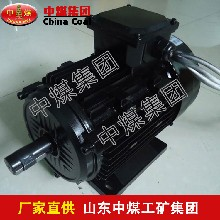 ZQ直流牵引电机,ZQ直流牵引电机型号图片